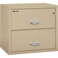 "File Cabinet, 2-Drawer, 31-1/8""x22-1/8""x27-3/4"", PHT  (1 EA)"