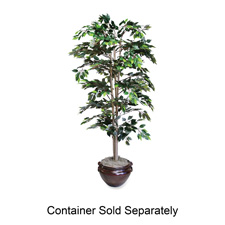 Lifelike Tree, 6' Ficus, Green
